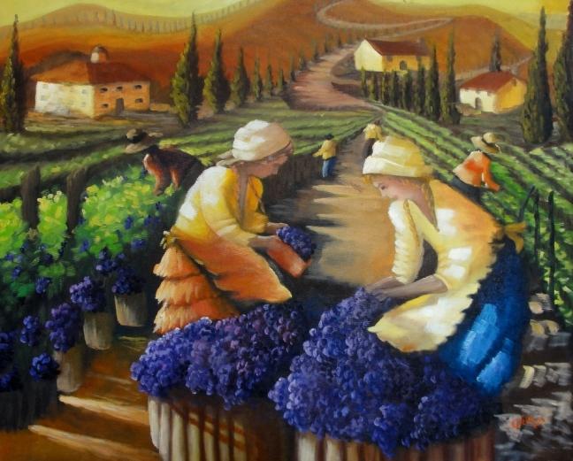 Colheita de Uvas na Toscana