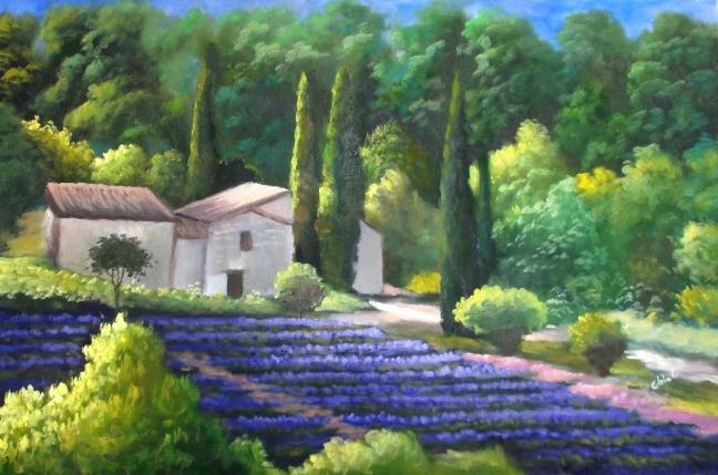 Lavandas em Provence